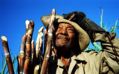 Sugarcane millionaire Daniel, Batalla de las Guasimas